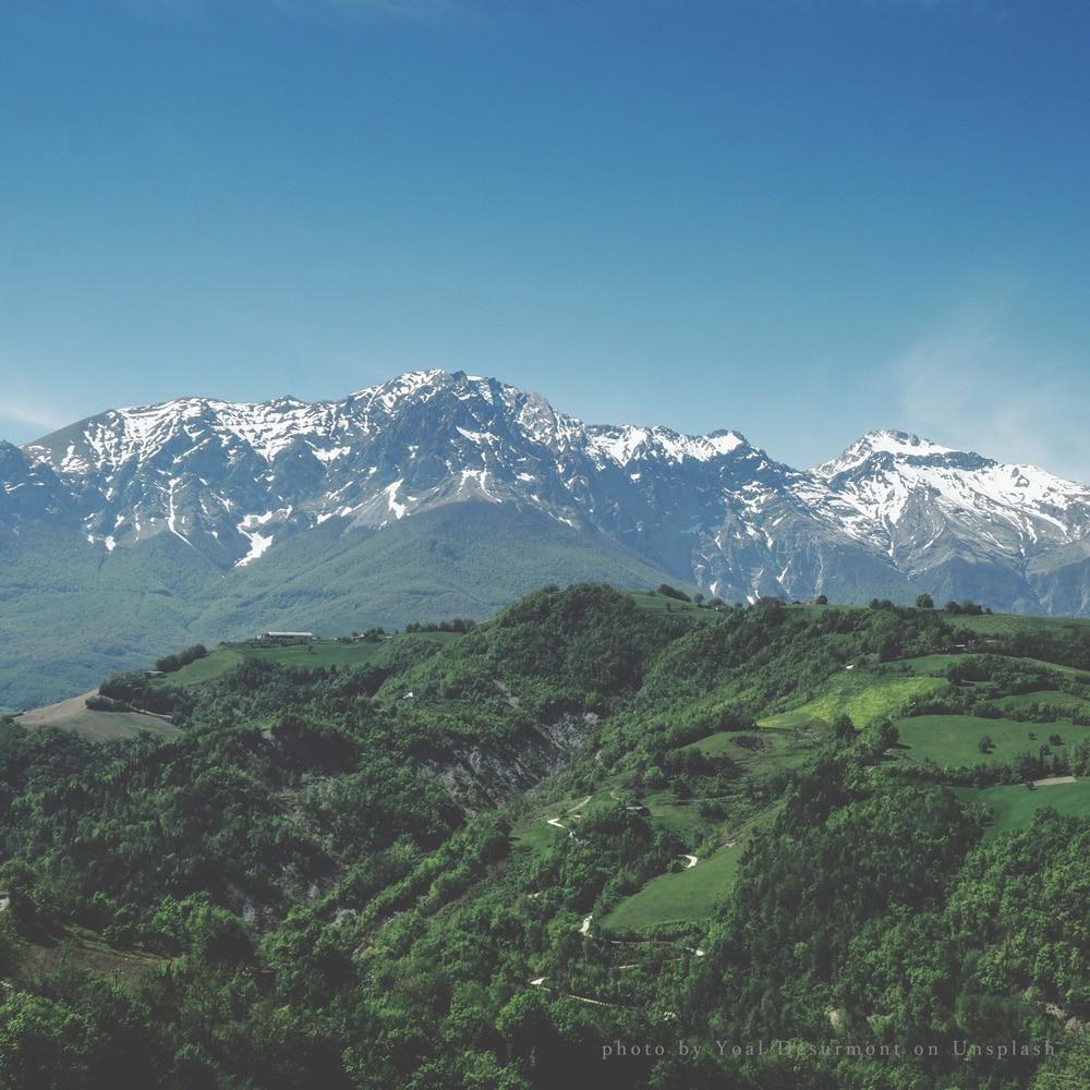 mountaincollector.jpg