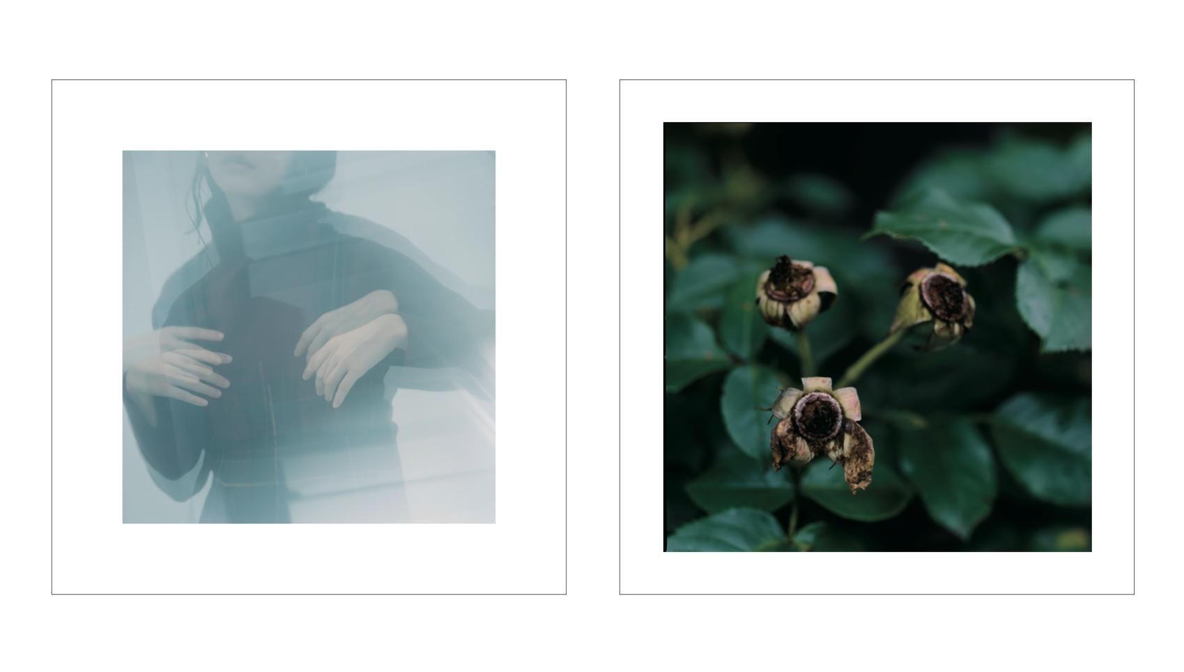 note et silence.|note et silence. 2019aw カタログ画像